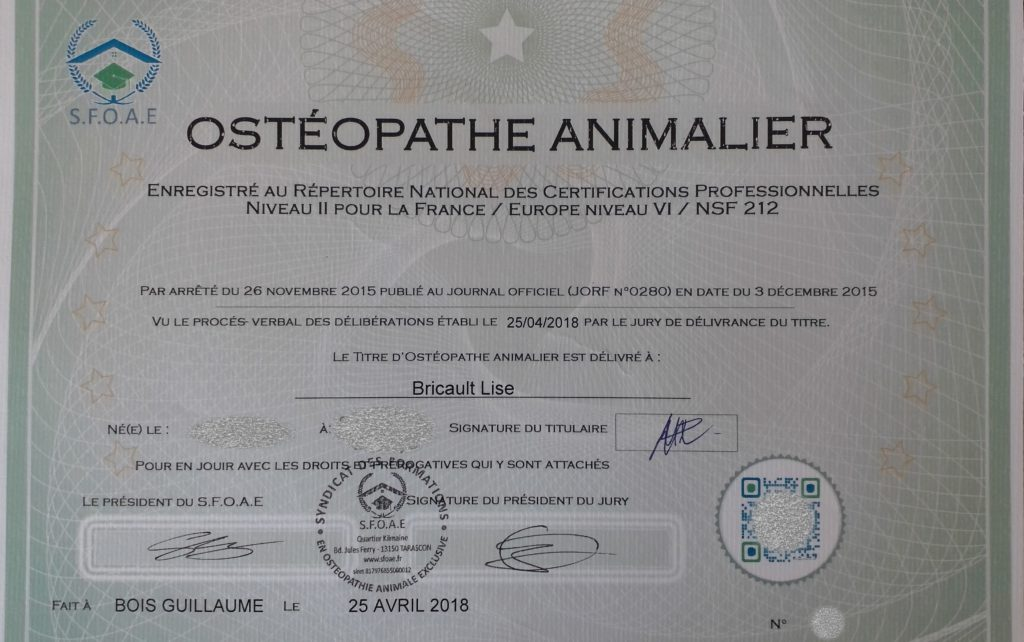 Diplome d'ostéopathie de Lise BRICAULT